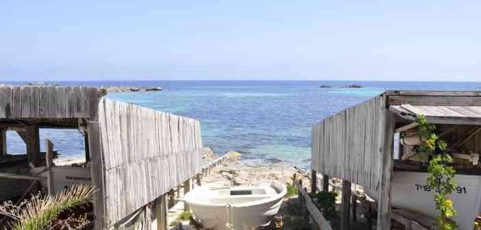 Formentera: Día de Playa