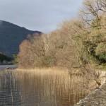Irlanda: Killarney and Ross Castle