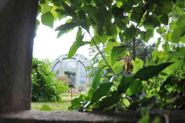 Le Jardin des Plantes by WOMANWORD