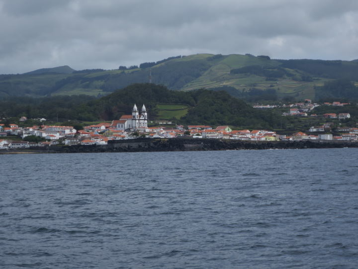 WOMANWORD en Azores. Ballenas en Terceira by WOMANWORD