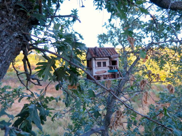 Duermo en las copas de los árboles by WOMANWORD